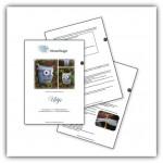 Haakpatroon Uiltje FreeBee PDF download